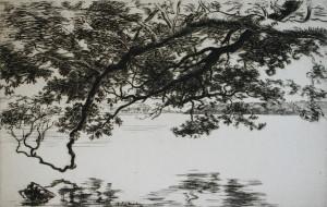 72-05-Branche sur l'eau